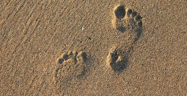 footprint-2353510_640.jpg