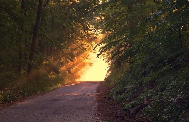 sunlight-166733_640 (1).jpg