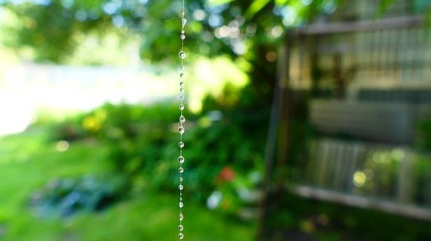 spider-web-2497939_640.jpg