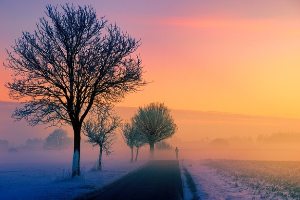 winter-3197686_640.jpg