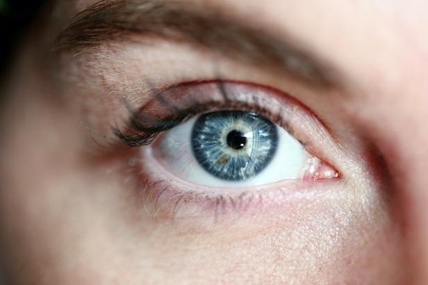 eye-3805227_640.jpg