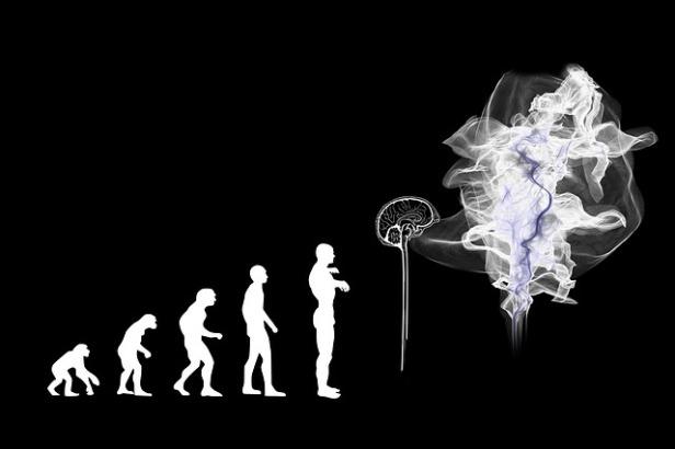 evolution-3885331_640.jpg